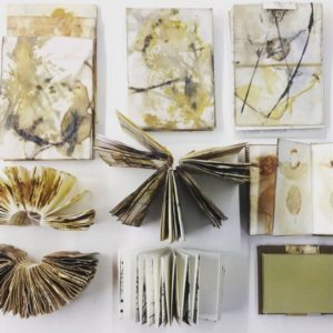 Beautiful Botanical Books - MOVED FROM 2020